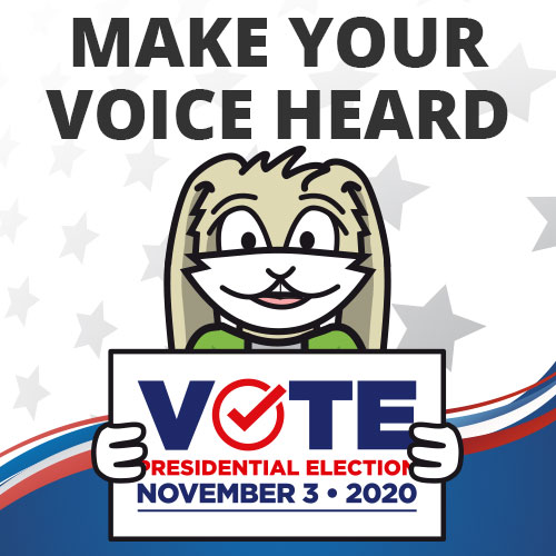 Make your voice heard. Vote on November 3, 2020.